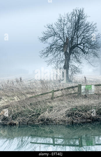 A Misty River Avon - Stock Image
