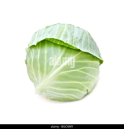cabbage isolated on white - Stock Image