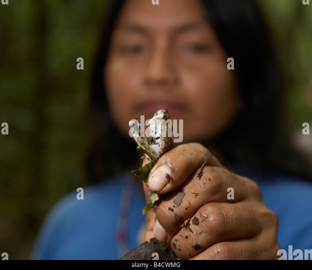 Native with poison snake, Amazon Rain Forest, Ecuador - Stock Image