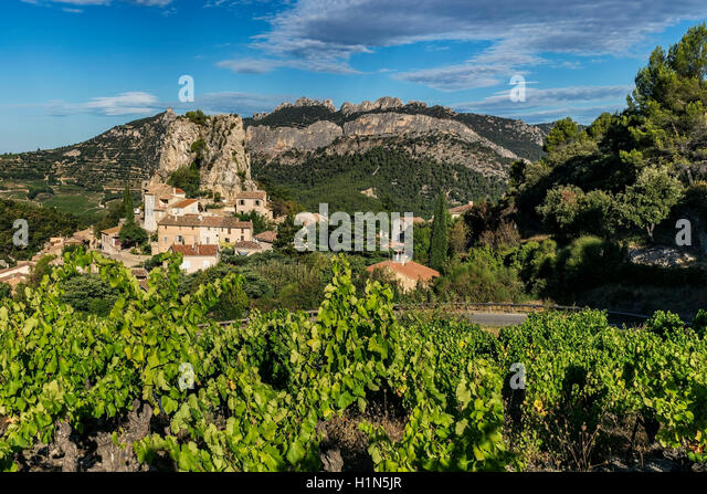 Viniculture, La Roque Alric, Montmirail Lace, Vaucluse, France, Europe - Stock Image