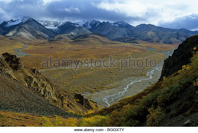 Alaska. Denali NP. Fall at Polychrome Pass. - Stock Image