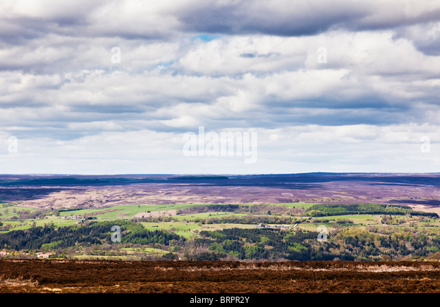 Typical North York Moors scene North Yorkshire England UK - Stock Image