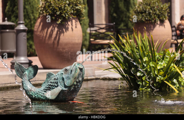Fish spout stock photos fish spout stock images alamy for Scott and white fish pond