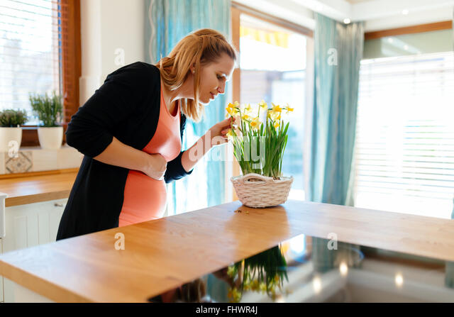 Pregnant woman taking care of flowers in modern kitchen - Stock Image