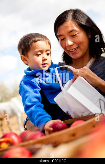a mother and her 2.5 year old son select apples from a bucket. - Stock Image