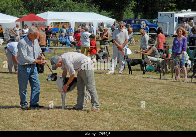 A country dog show Editorial use only. Held at Balls Cross in Sussex. - Stock Image