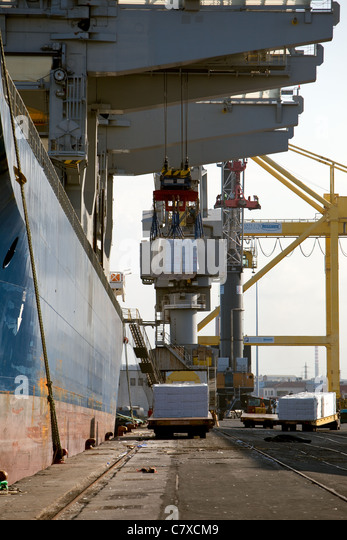 solid bulk cargoes essay Cargoes: bc1 /circ66 (6 february  on the vehicles and on the large and small containers for carriage in bulk in accordance  recurrente, essay, registro de.