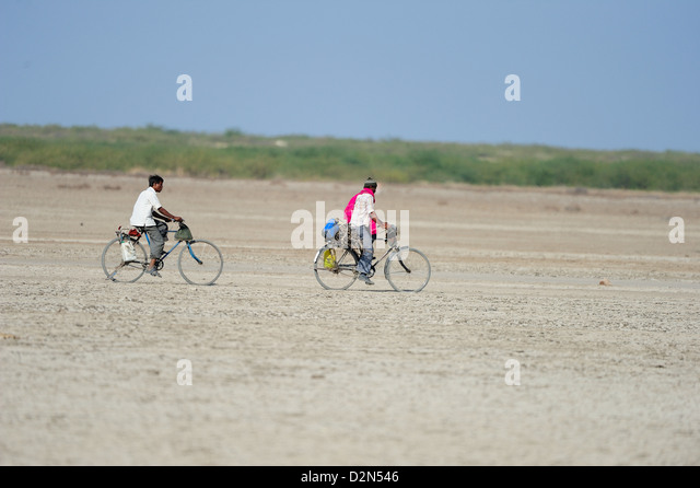 In rural India men go on bicycles to far off towns for work, Gujarat, India, Asia - Stock-Bilder