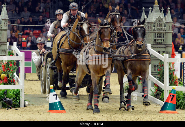 London, UK. 17th Dec, 2016. Olympia The London International Horse Show at Grand Hall Olympia London UK. The FEI - Stock-Bilder