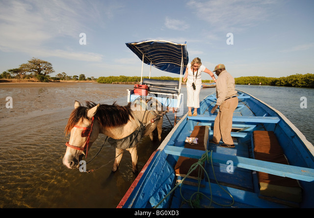 Delivering passangers to pirogue or fishing boat on the backwaters of the Sine Saloum delta, Senegal, West Africa, - Stock Image