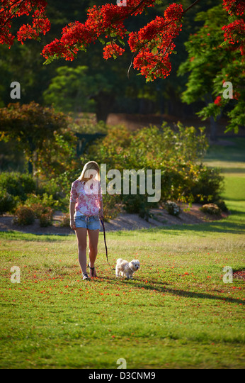 Dog Walking Parks South Brisbane