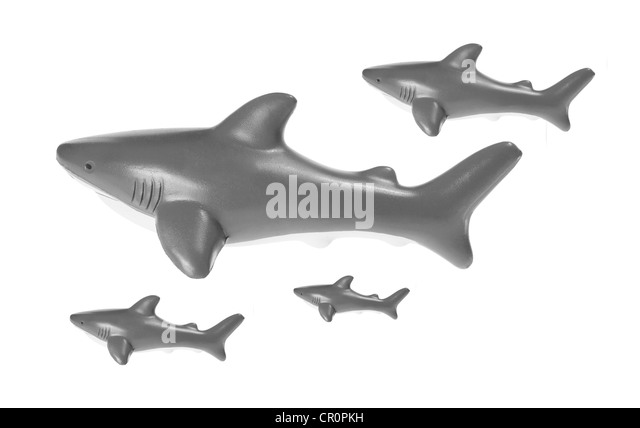 Toy Sharks - Stock Image