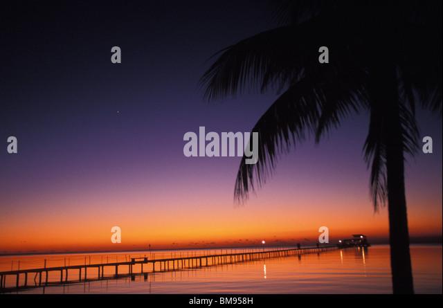 Palm Tree and sunset Isla de la Juventud Cuba - Stock Image