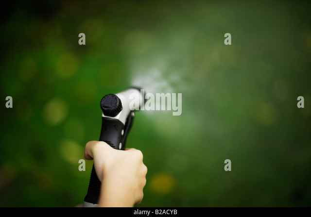 Six year old biy sprays lawn with hose and brass spraygun Mixed race indian ethnic and caucasian - Stock Image