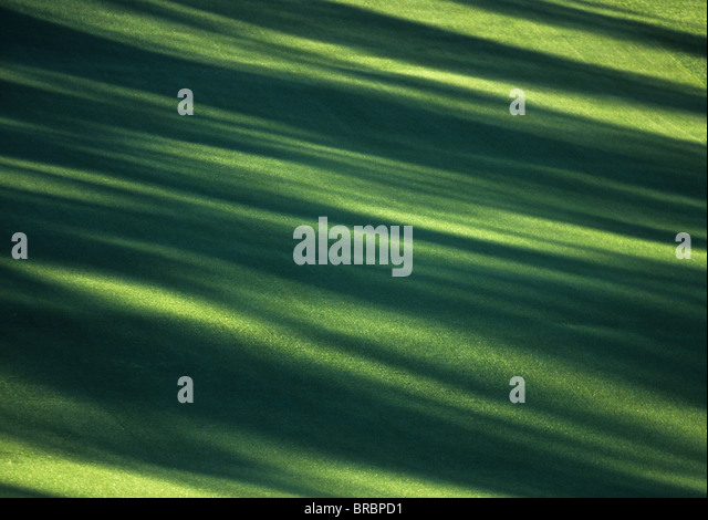 Shadows create lines of design across golf fairway - Stock Image