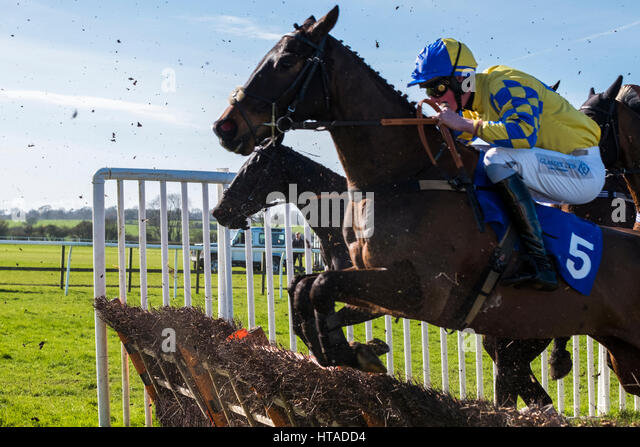 Wincanton, UK. 9th Mar, 2017. A glorious day at Wincanton Races No 5 Cheltenham De Vaige. Wincanton 1.50pm Credit: - Stock Image