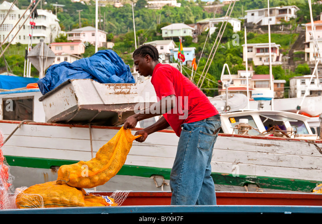 Grenada St Georges Carenage Harbour dock worker in red shirt loading produce on commerical ship - Stock Image