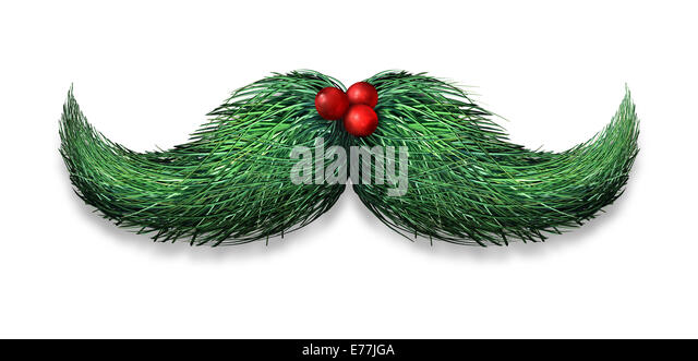 Winter mustache concept decoration made of pine needles and holly berries on a white background as a Christmas or - Stock Image