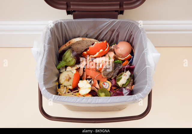 UK. Household food waste in indoor food waste bin with lid open indoors - Stock Image