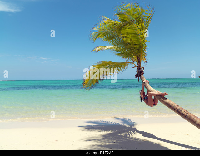 Dominican Republic Punta Cana Bavaro Beach palm tree on white sandy beach facing the sea with young woman climbing - Stock Image