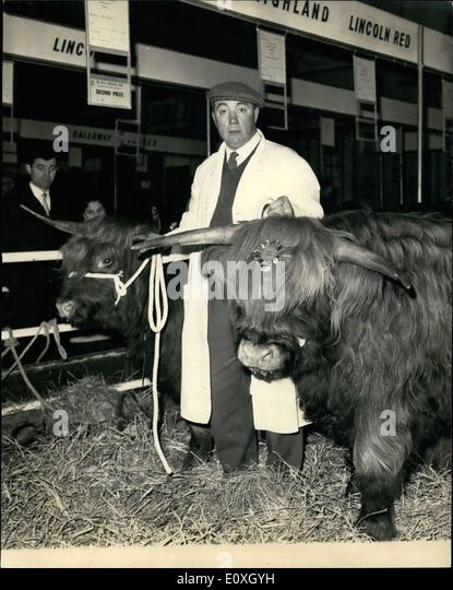 Dec. 12, 1966 - Opening of the Royal smithfield show: The Royal Smith field show and Agricultural Machinery exhibition, - Stock Image