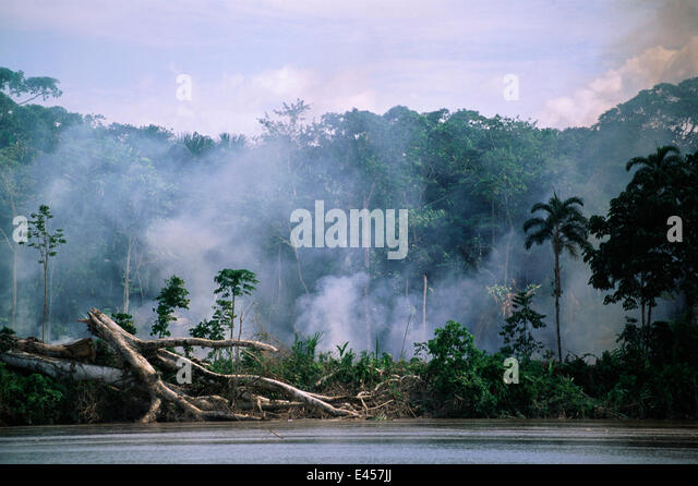 Deforestation - smoke from fires in Amazon rainforest along river bank, Ecuador, South America - Stock Image