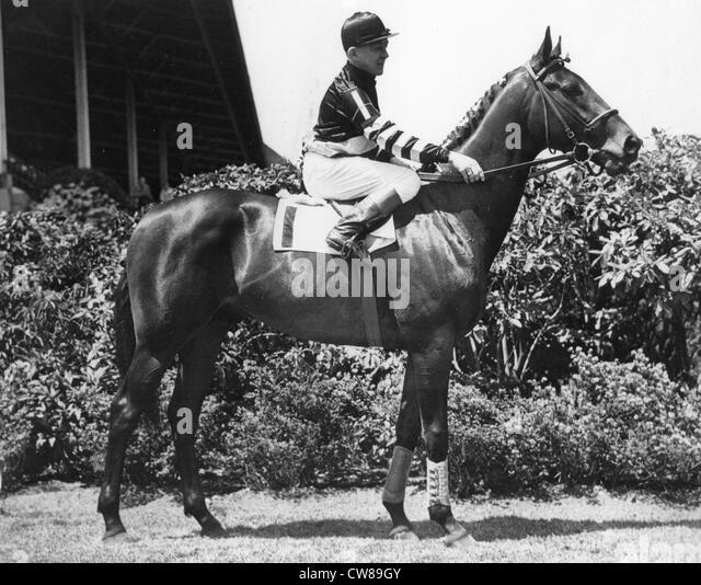 Triple Crown Winner War Admiral, 1937 - Stock Image