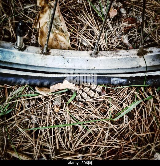 A flat tire is seen. - Stock-Bilder
