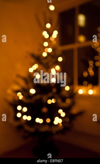 Defocussed Christmas tree with lights - Stock Image