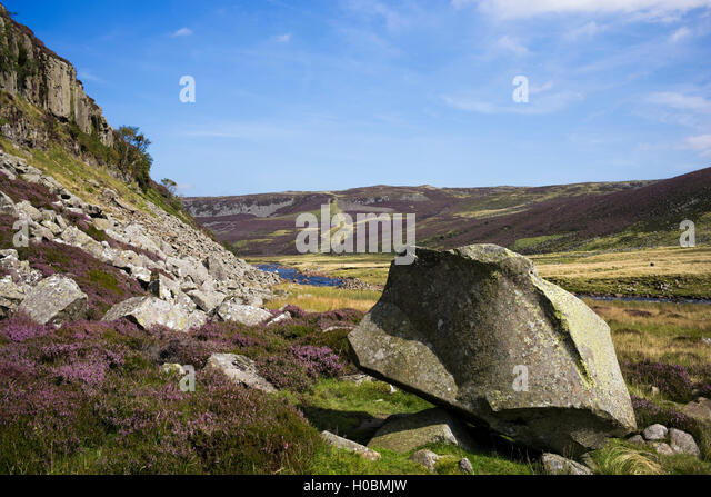 An artistically fractured rock below Falcon Clints, Upper Teesdale National Nature Reserve, Durham, England, UK - Stock-Bilder