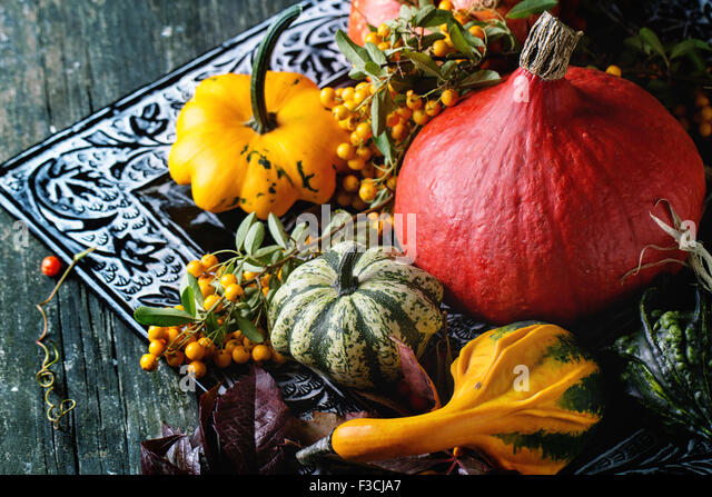 Assortment of different pumpkins and berries - Stock Image