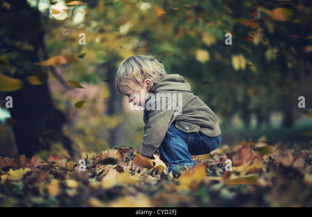 Little boy and autumn leaves - Stock Image