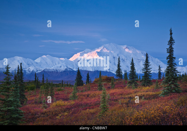 Scenic view of Mt. McKinley and the Alaska Range taken from the Wonder Lake campground in Denali National Park & - Stock Image