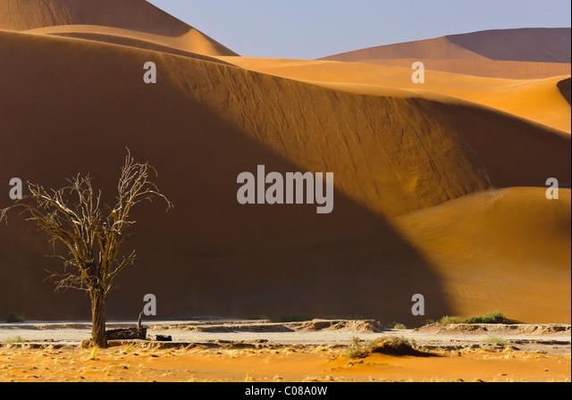 Dunes Namib-Naukluft National Park, Namibia, Africa - Stock-Bilder