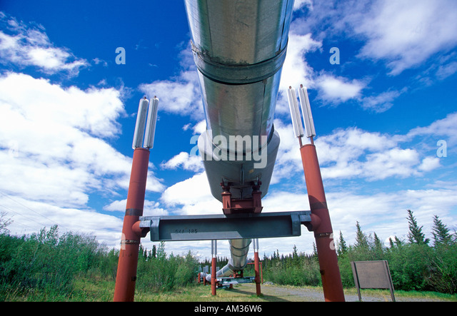 Trans Alaska Pipeline at Route 4 near Paxson AK - Stock Image