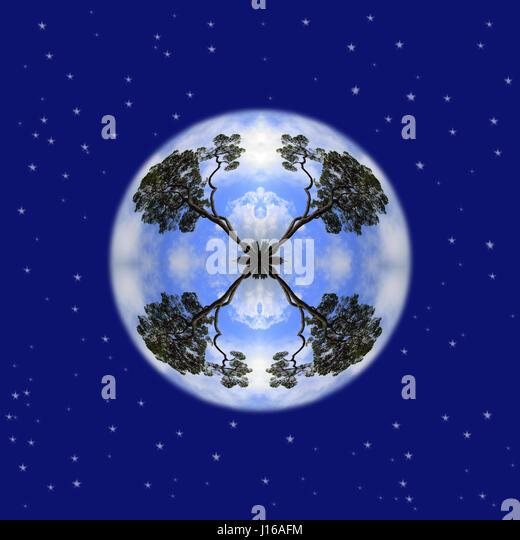 Phantasie Planet Baum mit Himmel voller Sterne - Stock Image