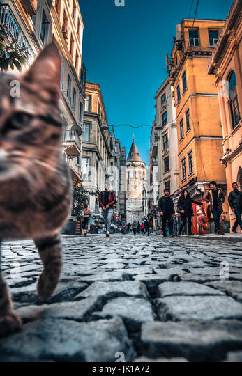 View of old narrow street with the Galata Tower(Turkish: Galata Kulesi)called Christ Tower by Genoese a famous medieval - Stock Image