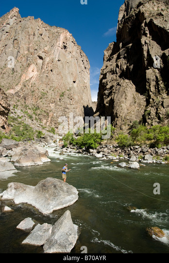 Man fly fishing in the Black Canyon of the Gunnison, Colorado. - Stock Image