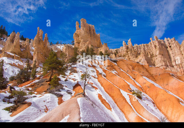 Winter in Bryce Canyon - Stock Image