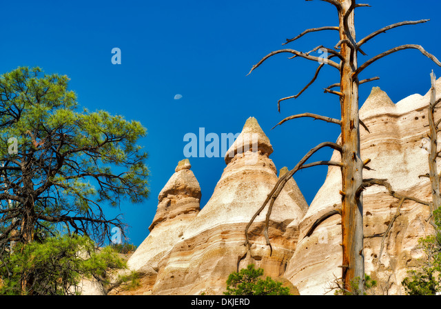 Dead tree, moon and rock formations in Tent Rocks National Monument, New Mexico - Stock-Bilder