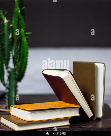 Bookcollection - Stock Image