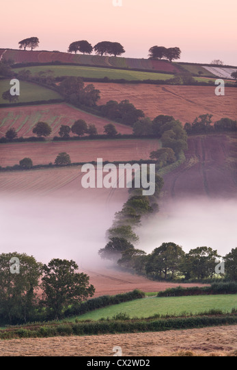 Mist covered rolling farmland, Stockleigh Pomeroy, Devon, England. Autumn (September) 2012. - Stock Image