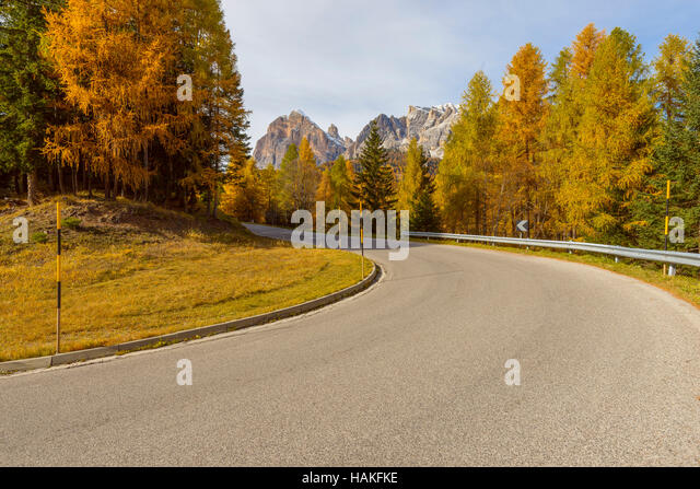 Mountain Road with Larch Trees in Autumn, Passo di Falzarego, Cortina d'Ampezzo, Veneto, Dolomites, Italy - Stock Image