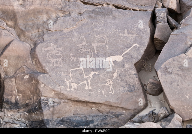 Petroglyphs of various animals in The Eastern Desert of Egypt - Stock Image