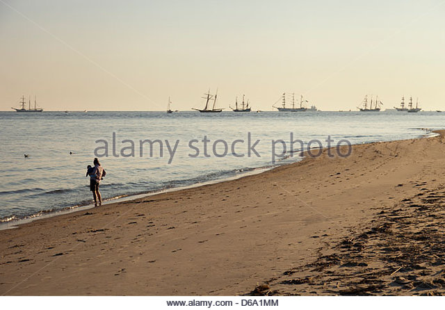 Parade of Sails on Chesapeake Bay - Stock Image
