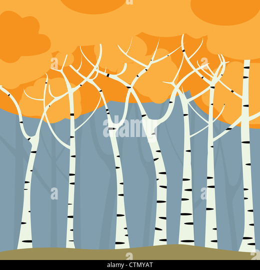 Romantic birch forest background, graphic art - Stock Image