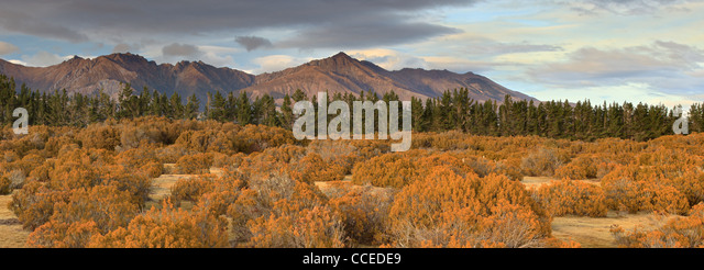 Mountains near Te Anau as seen from the Wilderness Area Scientific Reserve - Stock Image