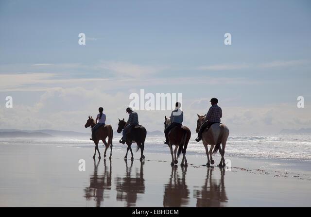 Horse riding, Pakiri Beach, Auckland, New Zealand - Stock Image