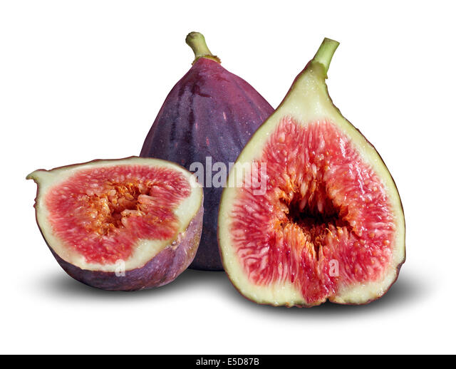 symbolism in ripe figs What is fig definition and meaning:fig   fig first mentioned in  or summer fig, then begins to be formed, and is ripe about august and (3) .