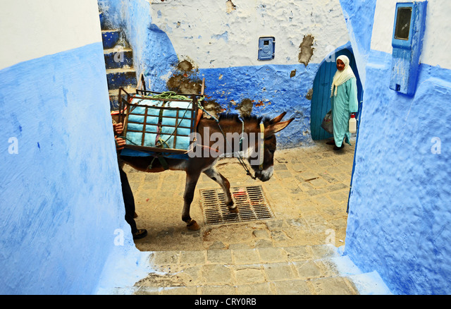 Chefchaouen street scene, Morocco - Stock Image